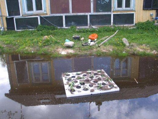 Kaip pasidaryti plaukiojantį daržą