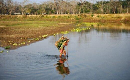 Vietinis gyventojas kerta upę Čitvano nacionaliniame parke