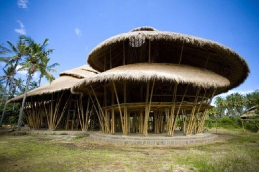 Balio žalioji mokykla / Mokyklos nuotr.