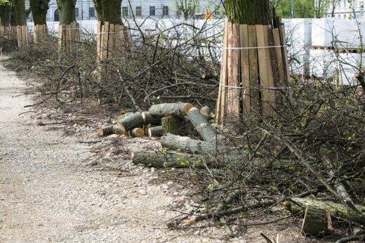 Lukiškių aikštės rekonstrukcija