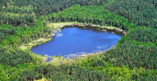Lietuva ypač turtinga vandens ir miškų