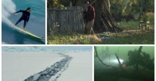 """Stopkadrai iš filmų """"Banglentininkai 3D"""", """"Pūsk lapą"""", """"Žiema"""" ir """"Ežerų dunge"""""""