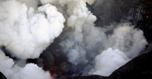 Islandijos vulkano pelenai kainavo 8,6 mlrd. litų