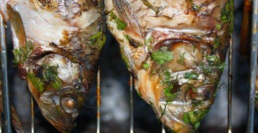 Jei ES nesureguliuotų, valgytume supuvusią žuvį?