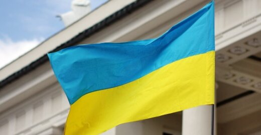 I.Degutienė: Lietuva galėtų teikti Ukrainai ekspertinę pagalbą