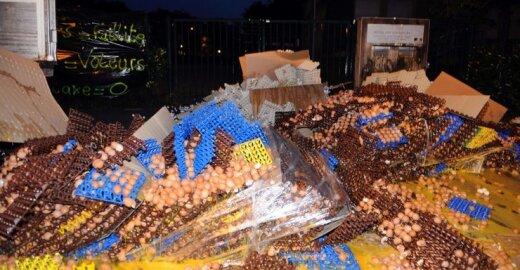 Prancūzijos ūkininkai sudaužė 100.000 kiaušinių, protestuodami prieš ES direktyvą