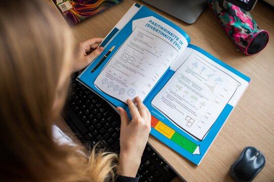 Šešis vaikus auginantys tėvai apie kalbas stabdyti nuotolinį mokymą: visuomenė išprotėtų ir degraduotų