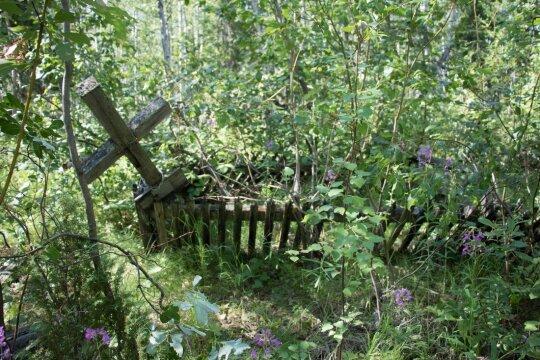 Pirminis kapinių vaizdas