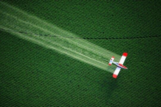 Pesticidais purškiamas laukas