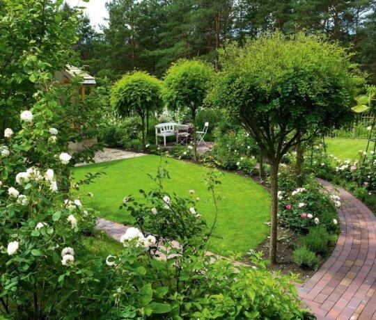 Šeimos sode - tik baltai ar pastelinėmis spalvomis žydintys augalai