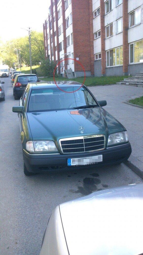 """""""Žaliųjų žmogeliukų"""" uniformų atributas – ir Vilniaus gatvėse"""