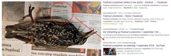 """Lietuvius baugina istorija apie kritusius paukščius: tai – tik """"ryšių su ateiviais atstovo"""" pramanas"""