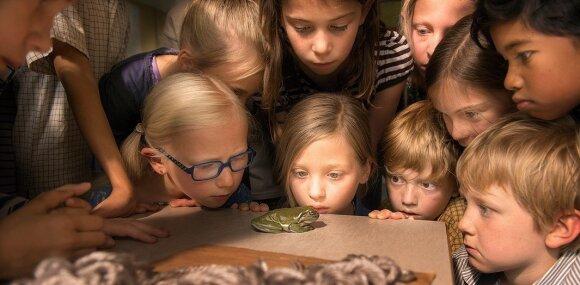"""Laimėkite bilietų į nuotaikingą premjerą vaikams """"Tamsta Varlius"""" <sup style=""""color: #ff0000;"""">(REZULTATAI)</sup>"""