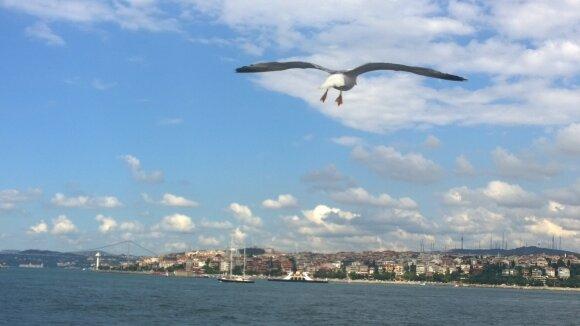 Vietoje tobulų atostogų – nemalonios žinios ir pažeminimas Turkijoje