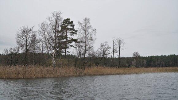 Siesarties ežero sala