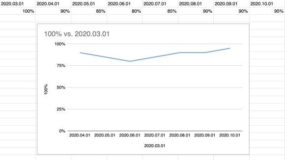 Būsto nuomos kainų pokyčiai pagal M. Mikočiūną