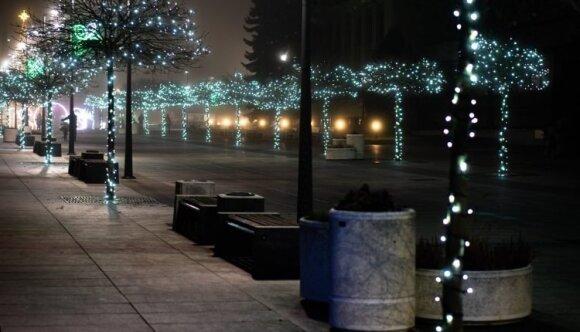 Dovana marijampoliečiams: visą žiemą džiugins šviečiančių medelių alėja