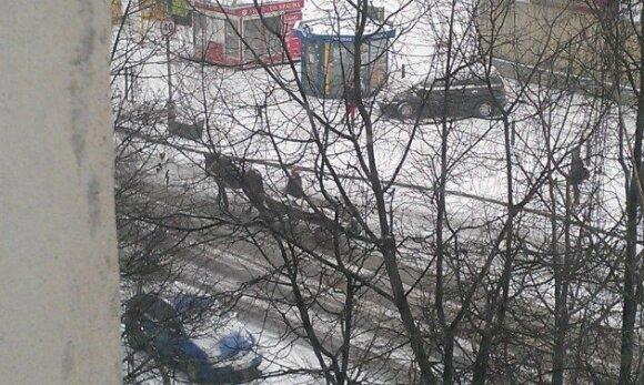 Vadeliotoja Vilniuje, Baltupiuose, Didlaukio gatvėje, sausio 10 d.