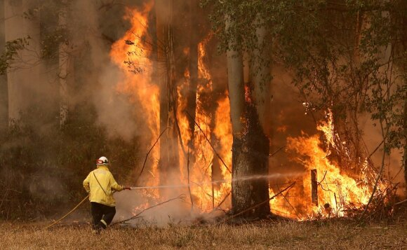 Australiją niokoja miškų ir krūmynų gaisrai