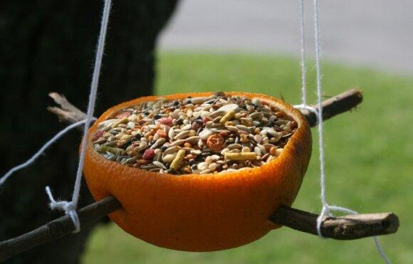 Kviečia vaikus meistrauti lesyklėles paukščiams