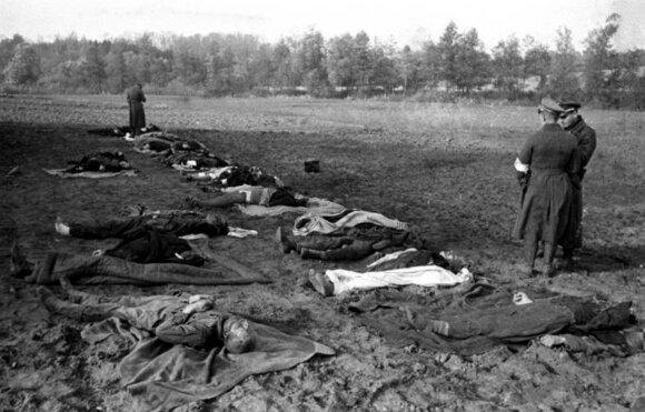 Nemirkiemio (Nemersdorf, dab. Majakovskojė) skerdynės – tik viena iš daugybės baisių sovietų piktadarybių. 1944 m. spalio 21 d. čia žvėriškai susidorota su civiliais gyventojais, įskaitant moteris ir vaikus.
