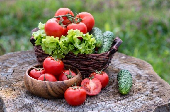4 požymiai, kad jūsų organizme kaupiasi toksinai: štai kas padės jiems lengviau pasišalinti