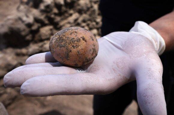 Izraelyje aptiktas 1000 metų išsilaikęs kiaušinis.