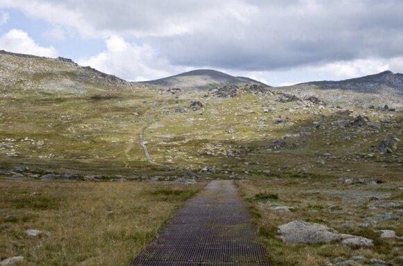 Kosciuškos kalnas