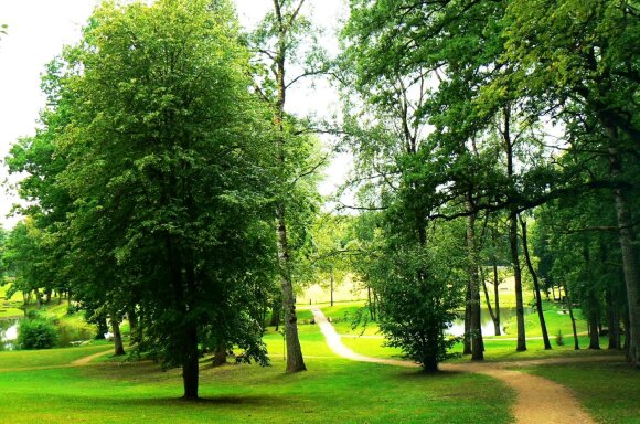 Paskutiniai šansai pasivyti vasarą: iš pelenų prikeltas dvaras ir pasakiška laukinė gamta