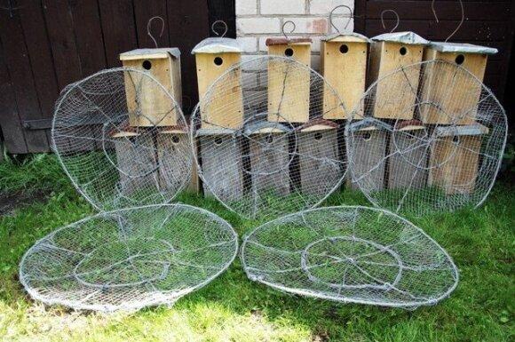 Vapsvaėdžiams paruošti lizdai ir žvirblinėms pelėdoms skirti inkilai