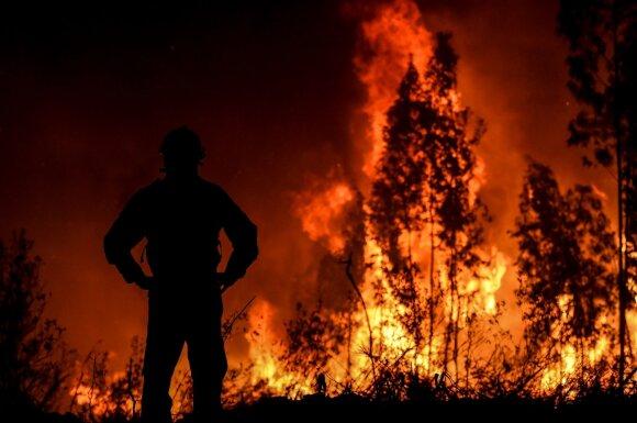 Milžiniški miškų gaisrai fiksuoti visame pasaulyje