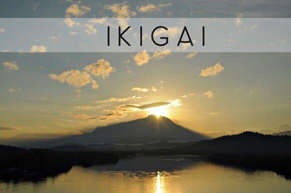 """Ar japonų """"ikigai"""" nukonkuruos danų koncepciją """"hygge""""?"""