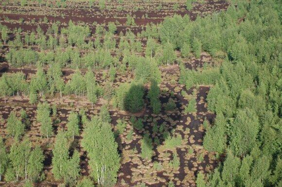Ne visi žino, kad gali gauti finansinę paramą: turintiems žemės reikėtų suskubti