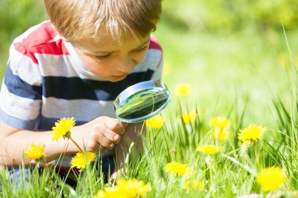 Mokymasis gamtoje