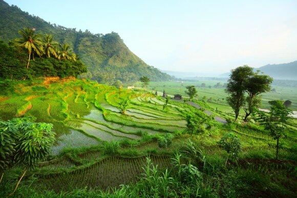 Nepamirštama Indonezija - vieta, kurioje susijungia skirtingi pasauliai