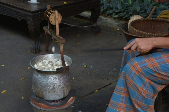 Natūralaus šilko istorijos pradžia – arbatos puodelyje