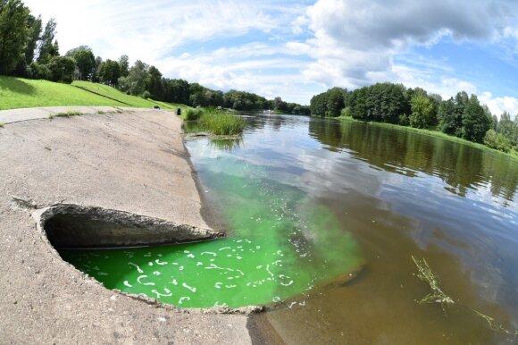 Nemunas Druskininkuose nusidažė žaliai