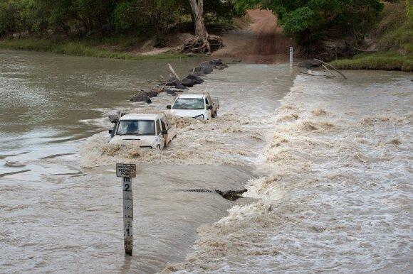 Krokodilų knibždantis kelias