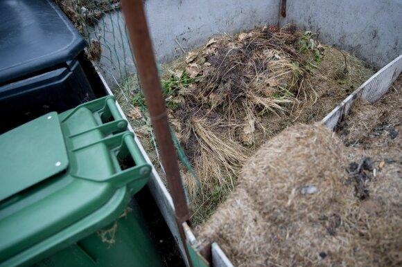 Metate sugrėbtus lapus į bendrą konteinerį? Ši klaida gali brangiai kainuoti