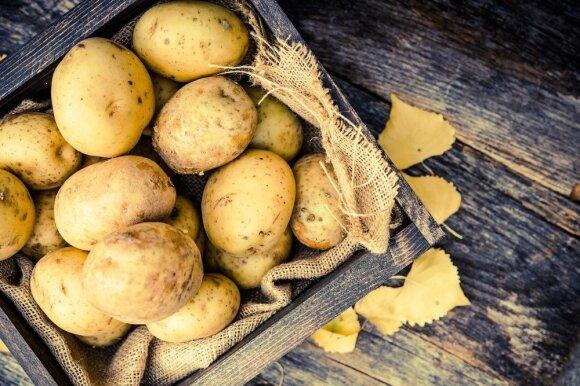 Pagiriamasis žodis bulvėms: kodėl naudingos net lieknėjantiems