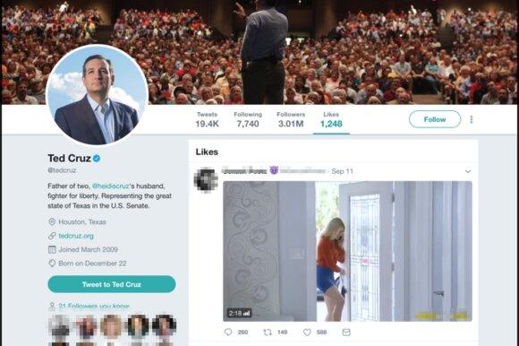 Populiarumas per naktį: buvęs kandidatas į JAV prezidento postą socialiniame tinkle neatsispyrė pornografiniam turiniui