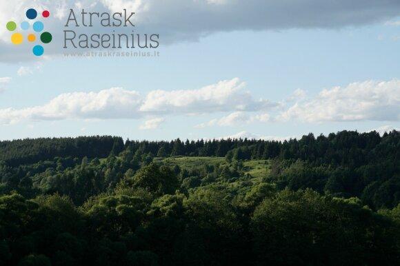 Rociškės piliakalnis