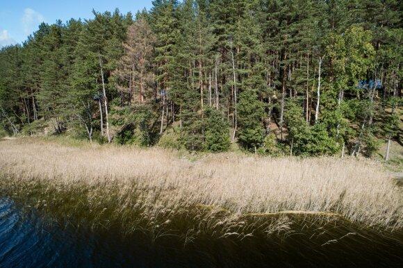 Matijošaičio sūnus bando pakartoti Karbauskio gudrybę: prieiti prie reto grožio ežero atsirado netikėtų kliūčių