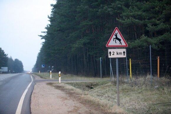 """Planuoja pokyčius """"Via Baltica"""" kelyje: skaudžių nelaimių turėtų mažėti"""