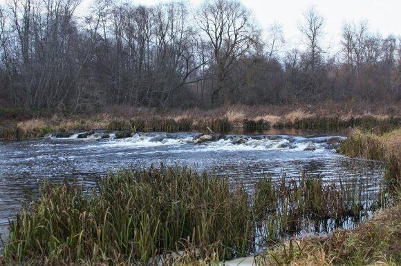 Seno malūno liekanos Šušvės upėje