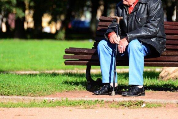 A. Maldeikienė apie pensijų kompensavimą: pinigai atiteks garsiausiai rėkiantiems