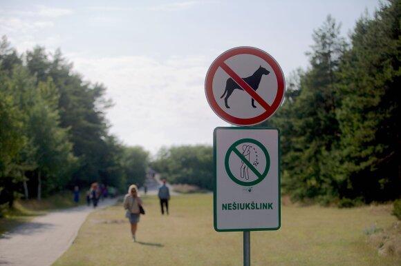 Į paplūdimius atsivesti šunų negalima