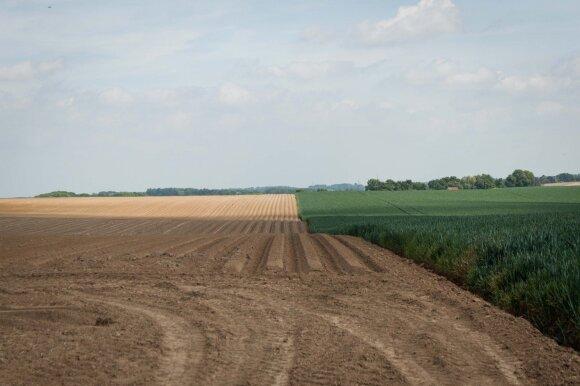 Kaip ūkiams palengvinti stichinių meteorologinių reiškinių padarinius – kas gali pasinaudoti lengvatiniu pasėlių draudimu