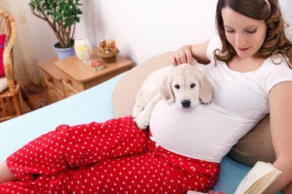 Stulbinantys šunų gebėjimai: gali pajusti, kad šeimininkė laukiasi, net jei ji pati to dar nežino