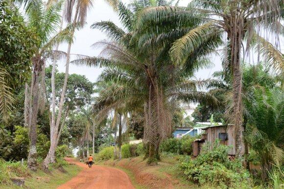 San Tome ir Prinsipė